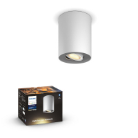 Philips Hue White Ambiance Pillar slimme opbouwspot wit 5W  LPH01546