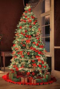 bij kerst denkt u natuurlijk aan een kerstboom en een kerstboom zonder kerstlichtjes kennen we eigenlijk niet als het gaat om de traditionele