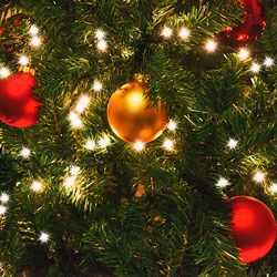 Alles over kerstverlichting