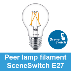 Peer lamp filament SceneSwitch E27